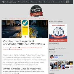 Corriger un changement accidentel d'URL dans WordPress