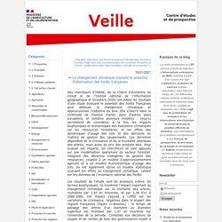 MAA CEP 15/01/21 Le changement climatique impacte le potentiel d'atténuation des forêts françaises