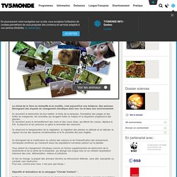 TV5MONDE- Les animaux racontent le changement climatique