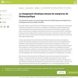 PNUE 18/07/06 Le changement climatique menace les mangroves de l'Océan pacifique