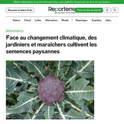 REPORTERRE 13/12/19 Face au changement climatique, des jardiniers et maraîchers cultivent les semences paysannes