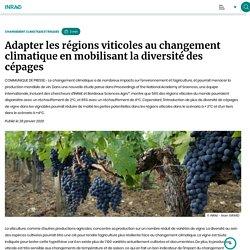 INRAE 28/01/20 Adapter les régions viticoles au changement climatique en mobilisant la diversité des cépages