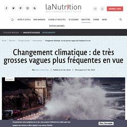 Changement climatique : de très grosses vagues plus fréquentes en vue Par Marie-Céline Ray Publié le 16/06/2020 Mis à jour le 17/06/2020
