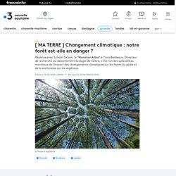 La forêt du sud-ouest est-elle en danger ? chercheur à l'INRA sur France 3
