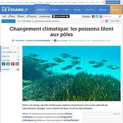Changement climatique: les poissons filent aux pôles
