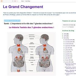 Santé : L'importance et le rôle des 7 glandes endocrines !
