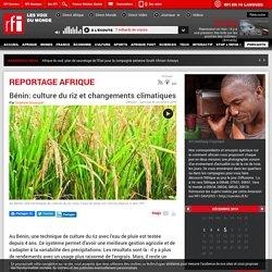 RFI 30/11/16 REPORTAGE AFRIQUE - Bénin: culture du riz et changements climatiques