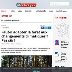 Faut-il adapter la forêt aux changements climatiques ? Pas sûr!