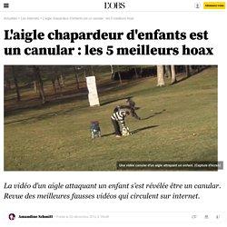 L'aigle chapardeur d'enfants est un canular : les 5 meilleurs hoax - 20 décembre 2012