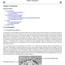 Chapitre 1 Introduction