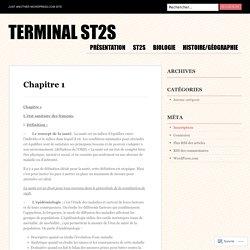 Terminal ST2S