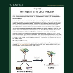 Chapter 10: How Nagalase Blocks GcMAF Production