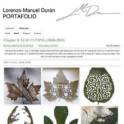 Chapter II - Portafolio de Lorenzo M. Durán