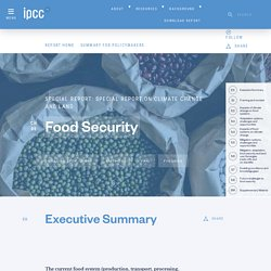 Chapter 5 : Food Security — Special Report on Climate Change and Land