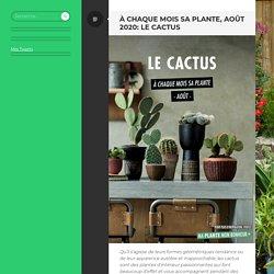 À chaque mois sa plante, août 2020: le cactus