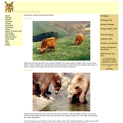 The Open Door Web Site : Biology : The Characteristics of Carnivores, Herbivores and Omnivores