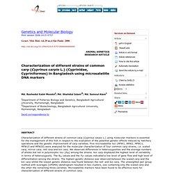 Genet. Mol. Biol. vol.29 no.4 São Paulo 2006 Characterization of different strains of common carp (Cyprinus carpio L.) (Cyprinid