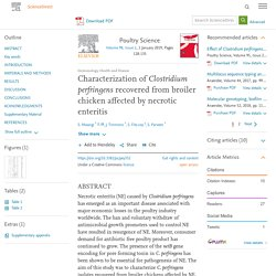 Poultry Science Volume 98, Issue 1, 1 January 2019, Characterization of Clostridium perfringens recovered from broiler chicken affected by necrotic enteritis