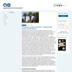 AGRICULTURE ET ENVIRONNEMENT 17/06/13 Charançon rouge du palmier : l'impasse des solutions alternatives