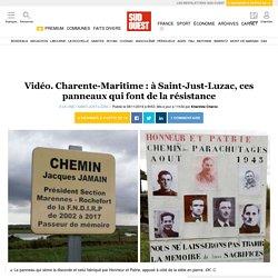 Vidéo. Charente-Maritime: à Saint-Just-Luzac, ces panneaux qui font de la résistance