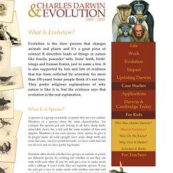 Charles Darwin & Evolution