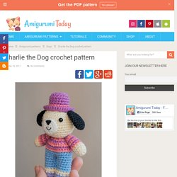 Charlie the Dog crochet pattern - Amigurumi Today