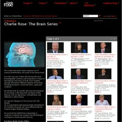 Charlie Rose Brain Series