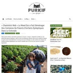 «Charlotte's Web» La Weed Qui a Fait Déménager Des Centaines De Parents D'enfants Épileptiques Dans Le Colorado