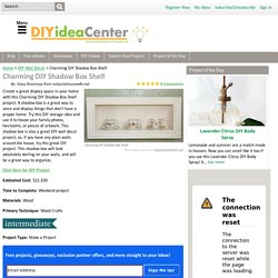 Charming DIY Shadow Box Shelf