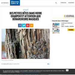 Des petites bêtes dans votre charpente? Attention aux démarcheurs masqués - Charente Libre.fr