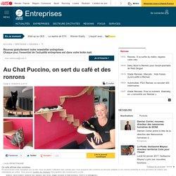 Au Chat Puccino, on sert du café et des ronrons