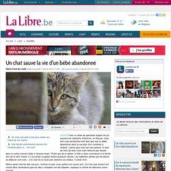 Un chat sauve la vie d'un bébé abandonné