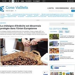 FRANCE 3 CORSE 23/01/14 La châtaigne d'Ardèche est désormais protégée dans l'Union Européenne.
