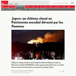 Japon: un château classé au Patrimoine mondial dévasté par les flammes