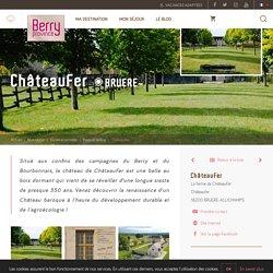 ChâteauFer à BRUERE-ALLICHAMPS - Patrimoine culturel - Berry Province