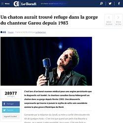 Un chaton aurait trouvé refuge dans la gorge du chanteur Garou depuis 1983