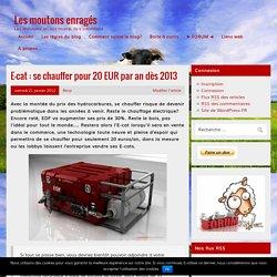 E-cat : se chauffer pour 20 EUR par an dès 2013