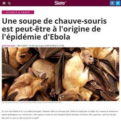 Une soupe de chauve-souris est peut-être à l'origine de l'épidémie d'Ebola