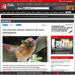 Les chauves-souris, réservoir de virus réémergents - Science