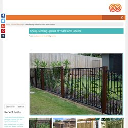 Cheap Fencing Option For Your Home Exterior