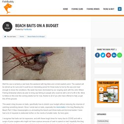 Beach Baits On A Budget