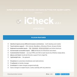 Checkboxes and radio buttons customization (jQuery and Zepto) plugin