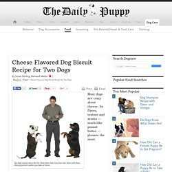 Cheese Flavored Dog Biscuit Recipe for Two Dogs