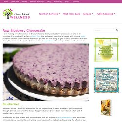 Raw Blueberry Cheesecake (vegan, gluten free, paleo) by JesseLWellness