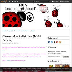 Cheesecakes individuels (Multi Délices)