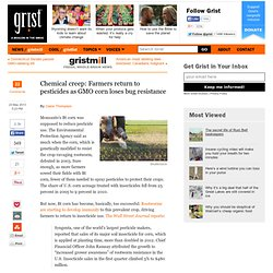 Chemical creep: Farmers return to pesticides as GMO corn loses bug resistance