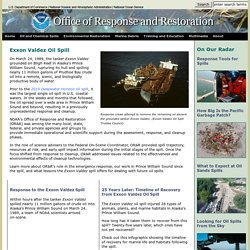 Oil and Chemical Spills/Significant Incidents/Exxon Valdez Oil Spill
