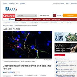 Chemical treatment transforms skin cells into neurons