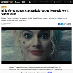Birds of Prey Uses Ace Chemicals Footage from Ayer's Suicide Squad