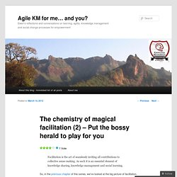 The chemistry of magical facilitation (2) – Put the bossy herald to play for you